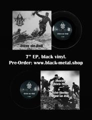 Aryan Blood - Stürme aus Stahl (EP)